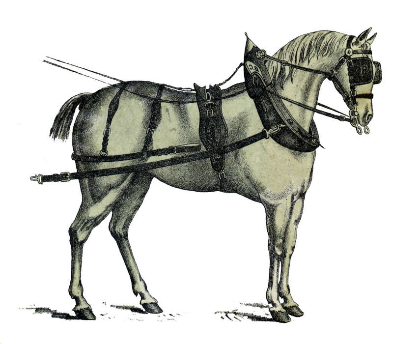 Foire cheval brocante montcuq salon de collectionneurs 46 - Foire a tout 60 ...